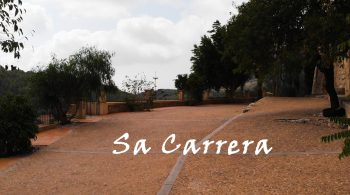 Sa Carrera Terrace with panoramic views of La Vall Verd.  It's the ideal place to contemplate the facade  and see the impressive defense tower. 320 m² space that allows the assembly  of long tables for food, an appetizer at the reception,  a civil ceremony, party area or children's area.