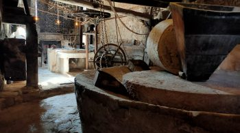 Sa TafonaOil mill that preserves all its original parts. In it you can make the welcome aperitif, have a dessert, a coffee or a drink.